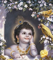 Krishna with a Beautiful Face